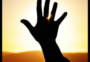 Blog 3: zelfsturing betekent afscheid nemen