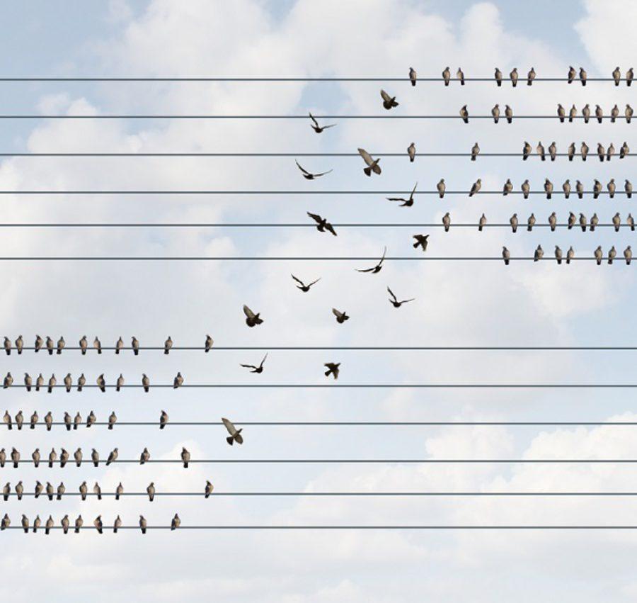 Zelforganiserende teams: definitie en word je er gelukkig van?